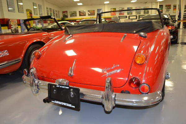 Used 1967 Austin Healey 3000 Convertible | Pinellas Park, FL n5
