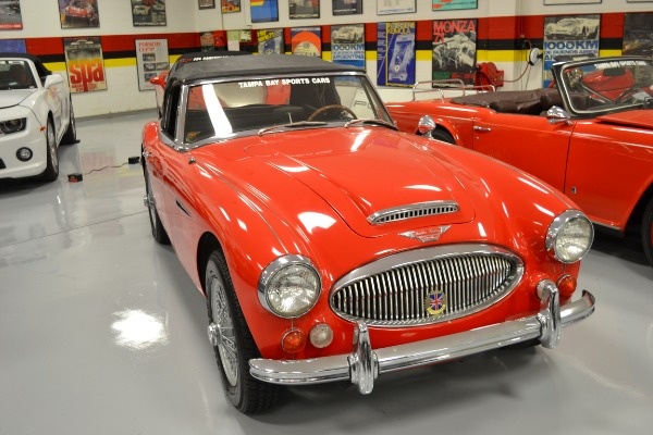 Used 1967 Austin Healey 3000 Convertible | Pinellas Park, FL n6