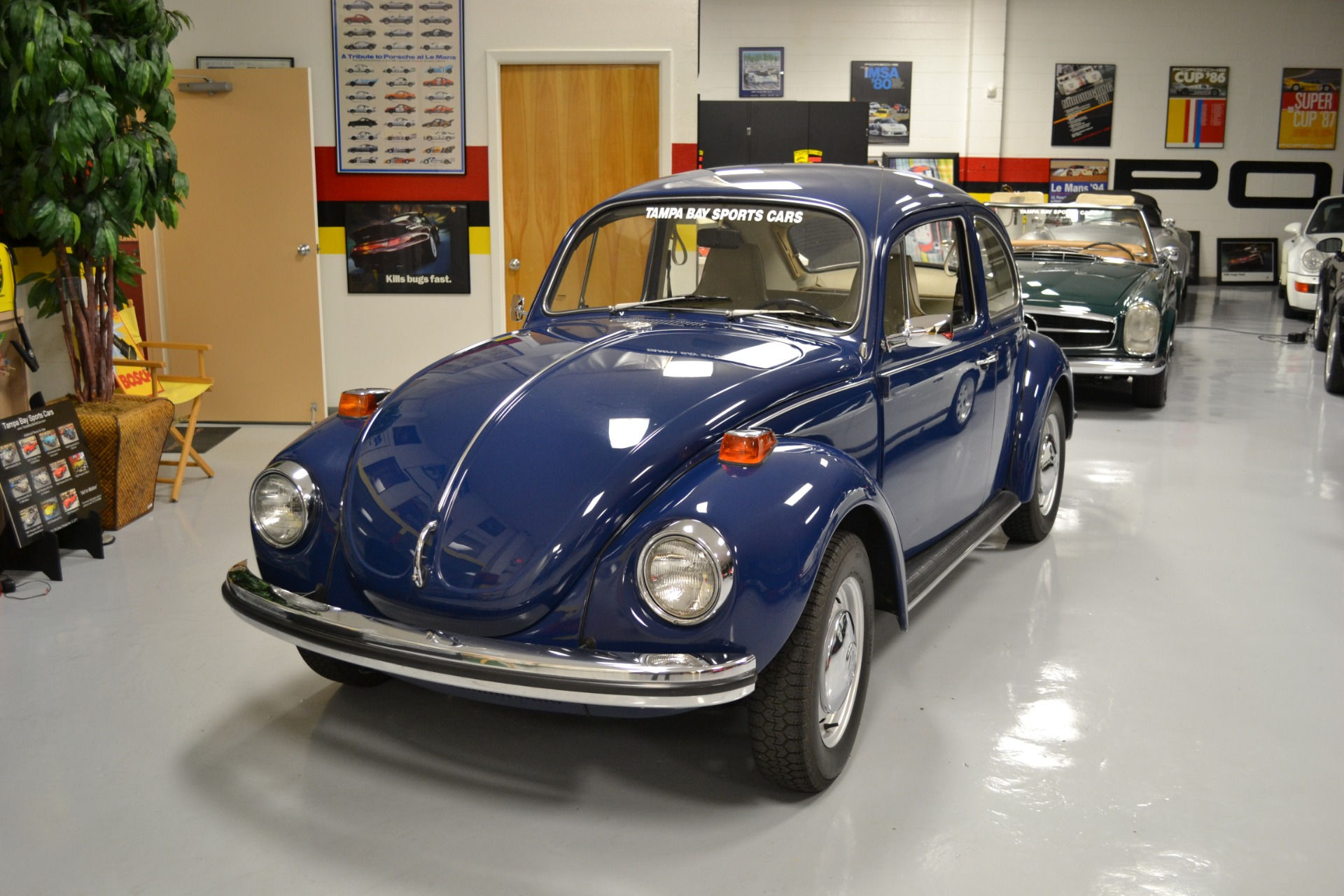 cargurus bugs overview cars volkswagen beetle pic